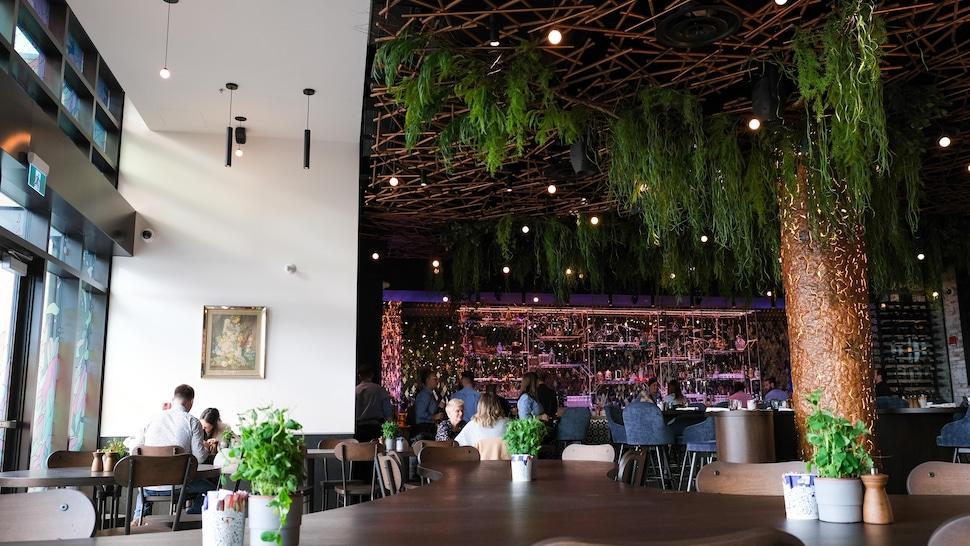 De grandes fenêtres laissent pénétrer une lumière naturelle qui complimente le décor,  notamment dans la clairière, une zone adaptée aux familles et aux groupes avec ses petits pots d'herbes comestibles.