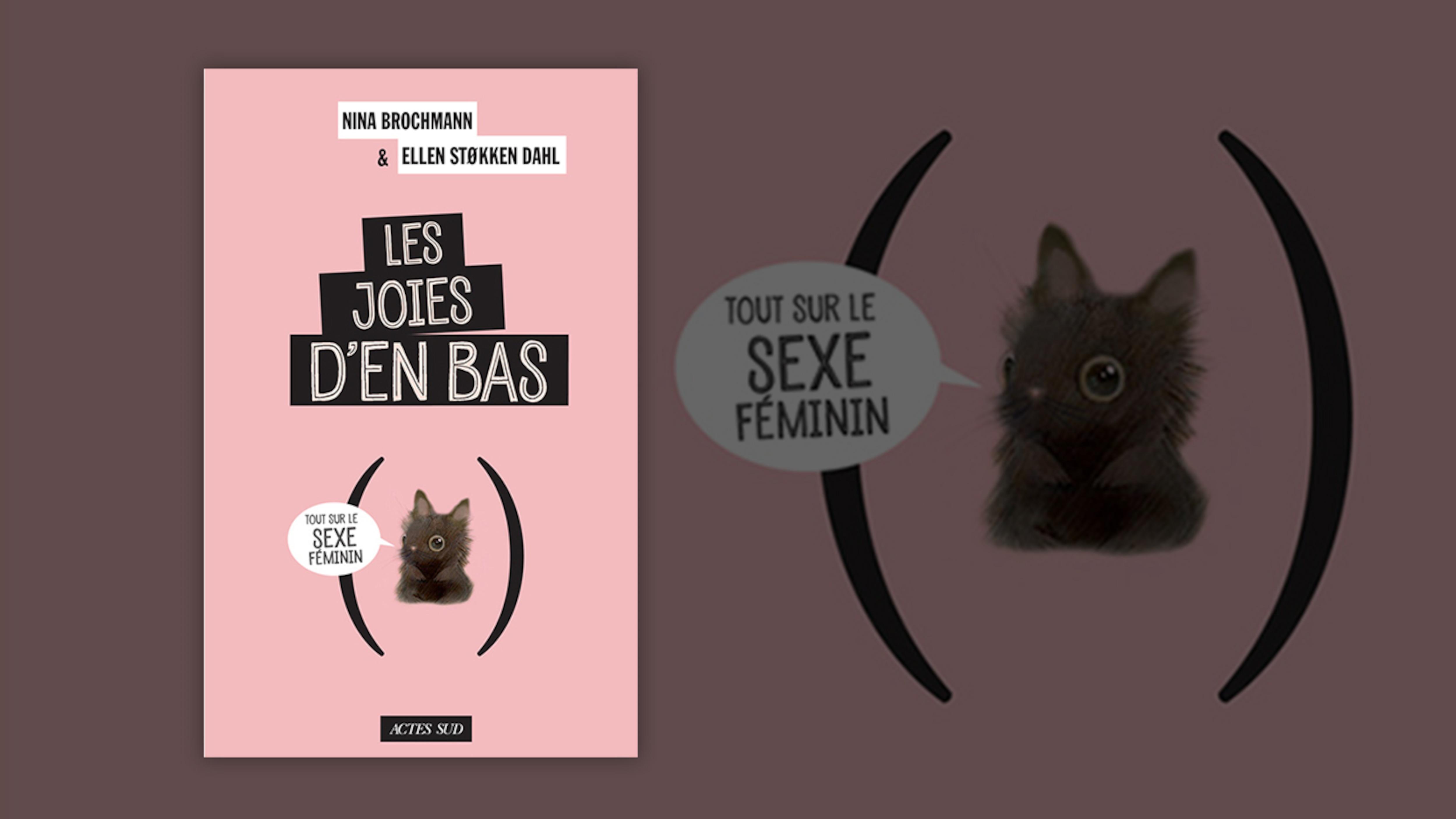 Un dessin d'un chaton entre des parenthèses dit : «tout sur le sexe féminin».