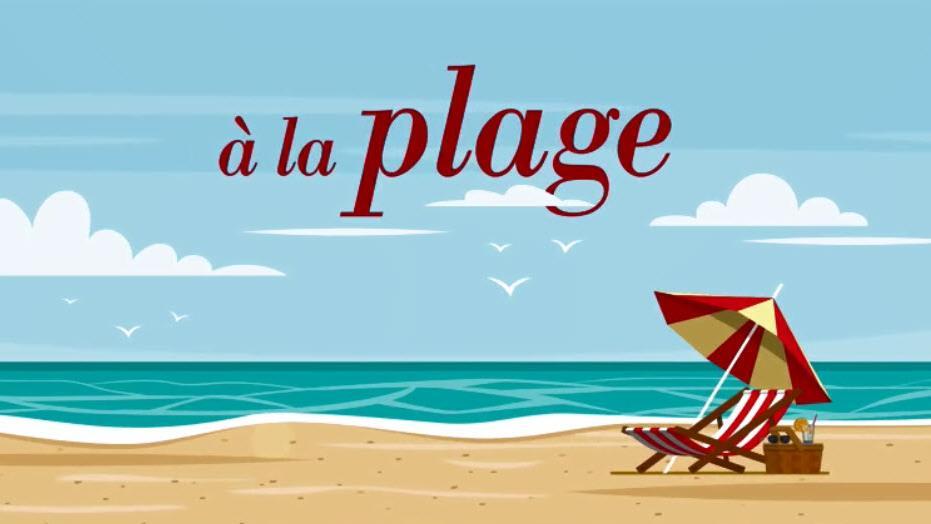 Cet été, qu'est-ce qu'on lit... à la plage