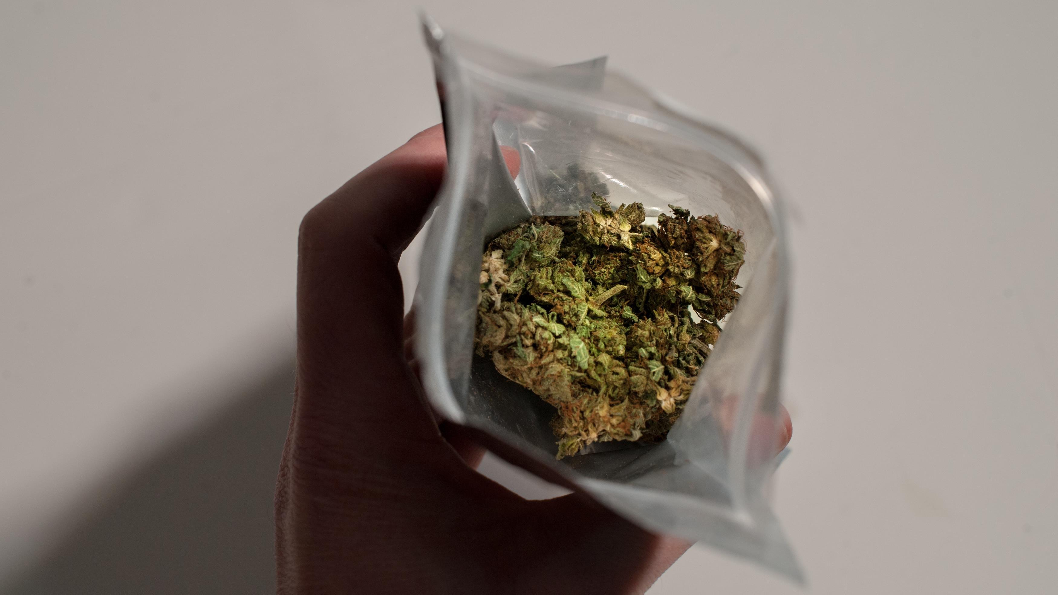 Cannabis : les comités de parents plaident pour l'âge légal à 21 ans