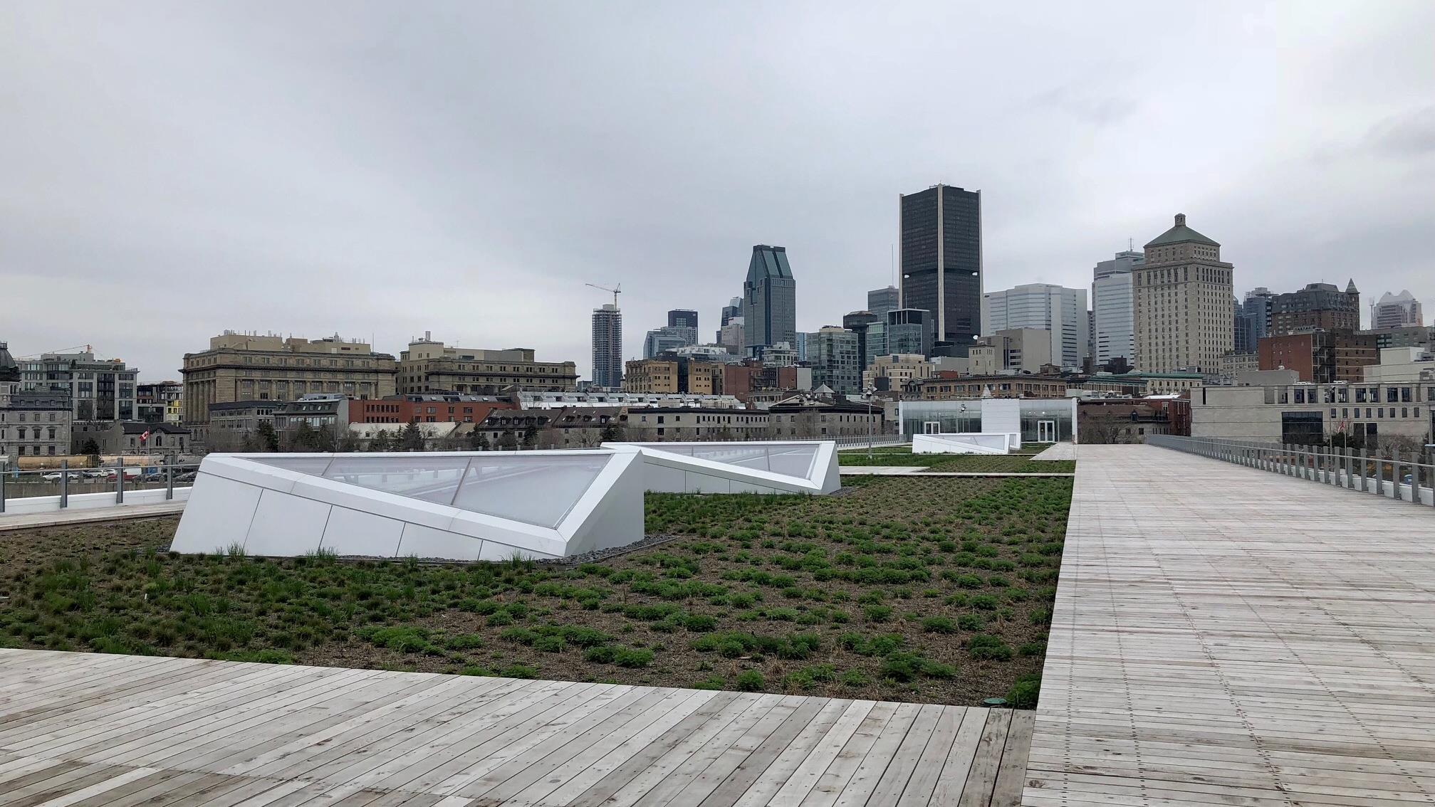 On a déjà vu toits verts plus luxuriants.