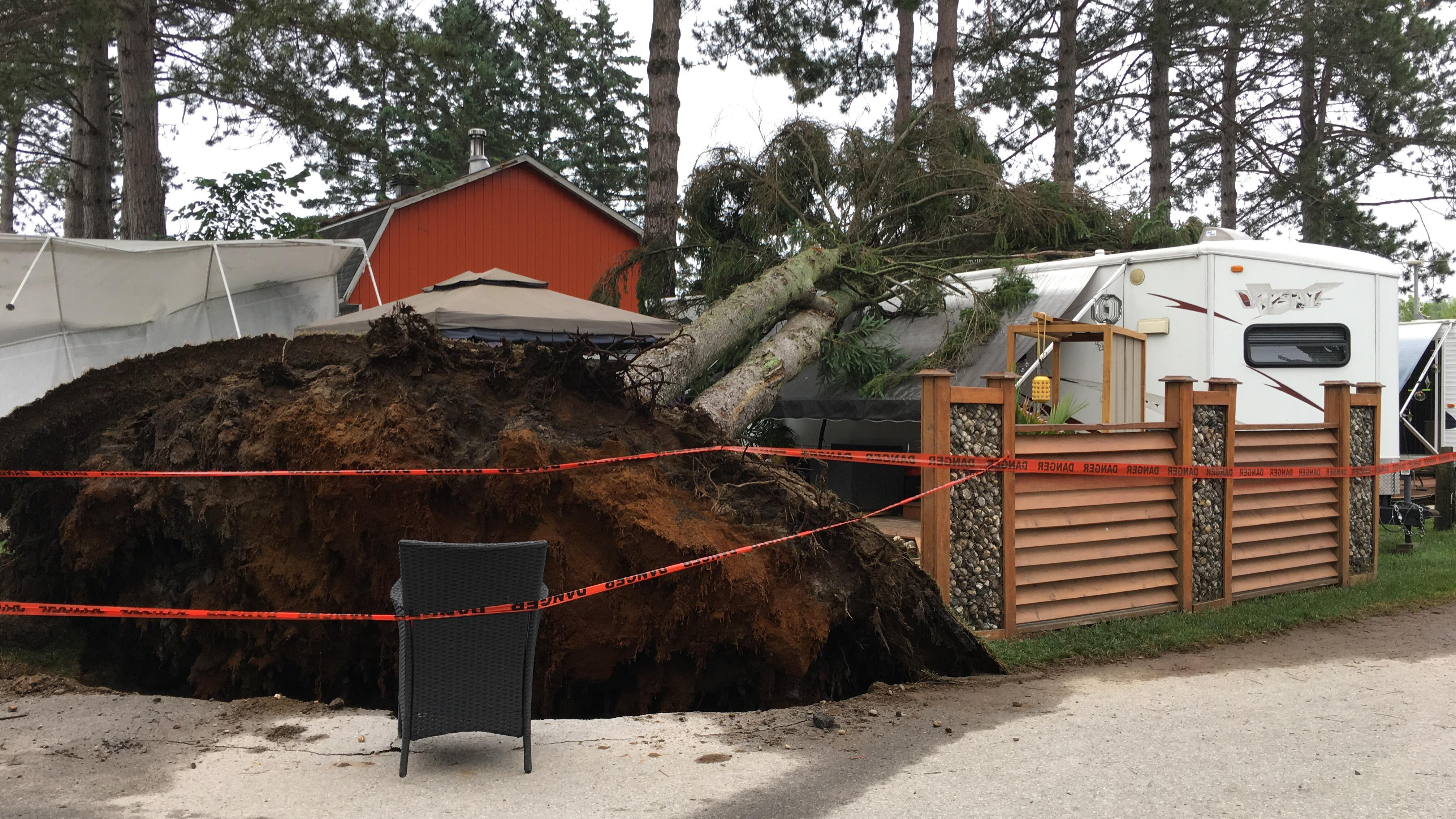Winds were so strong that they broke trees and knocked down power lines, said the regional director of public safety for the region, Sébastien Doire. (Marilyn Marceau/Radio-Canada)