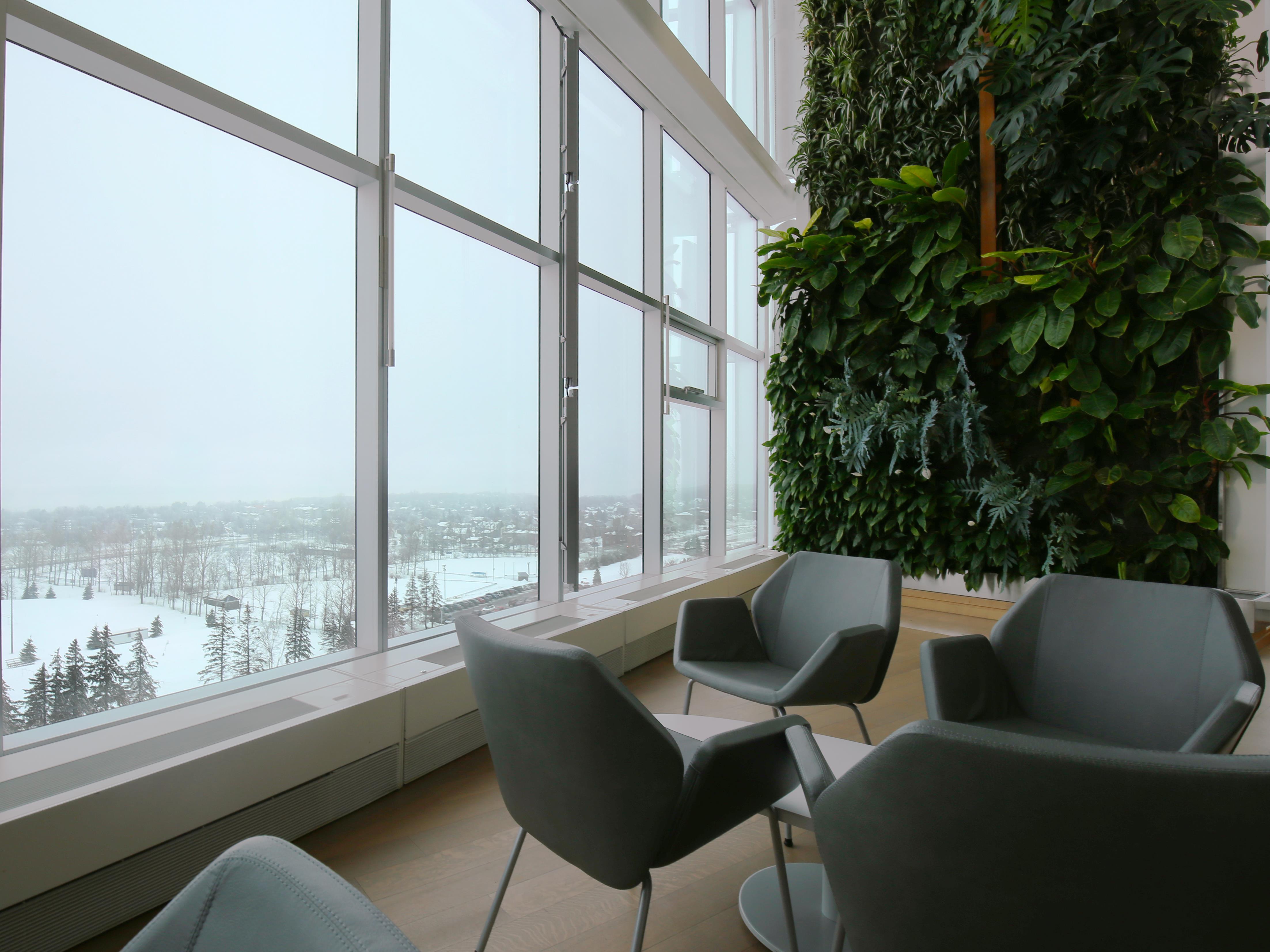 Un espace détente en bordure d'un mur végétal