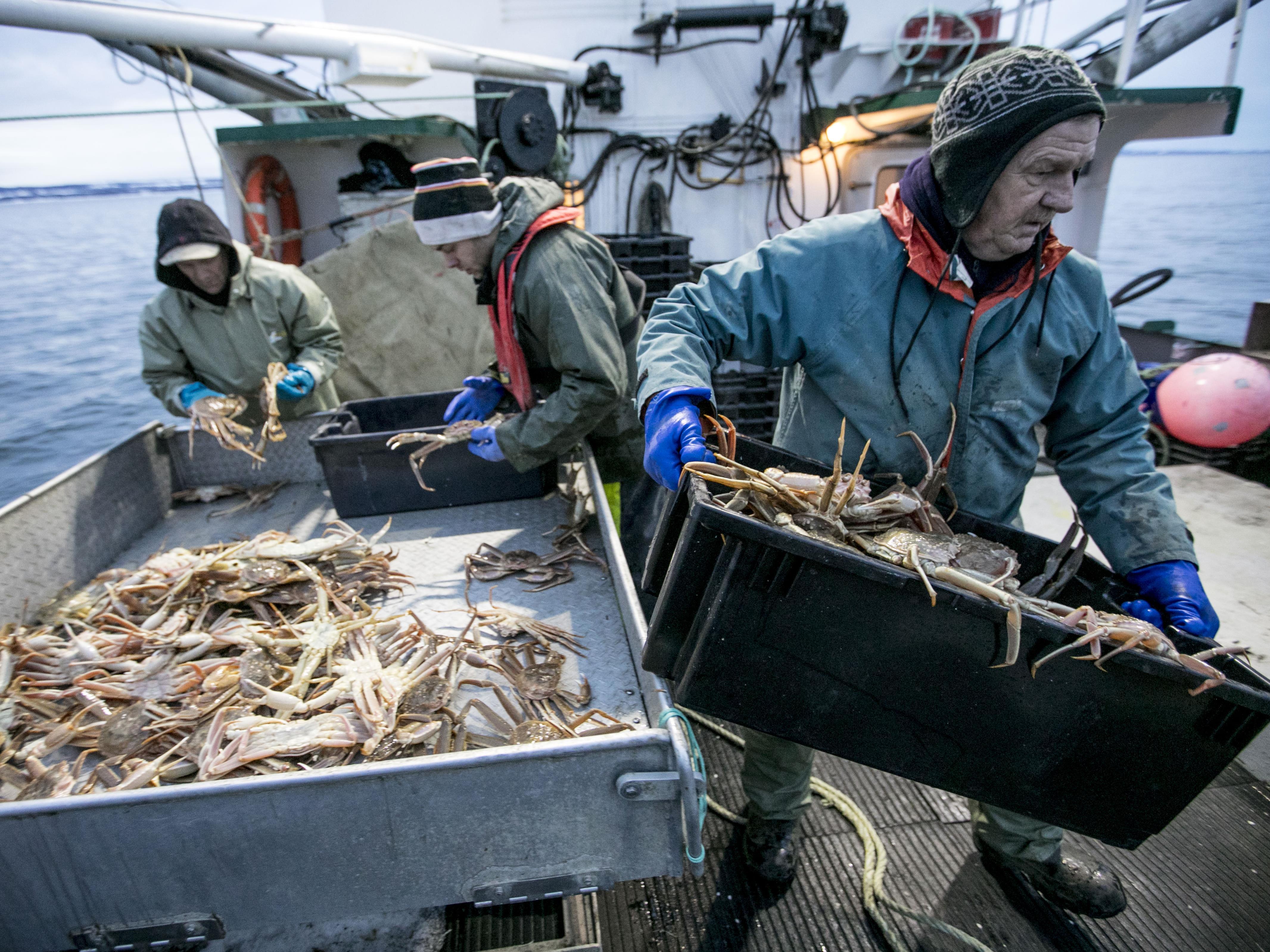 Un pêcheur transporte un bac de crabe