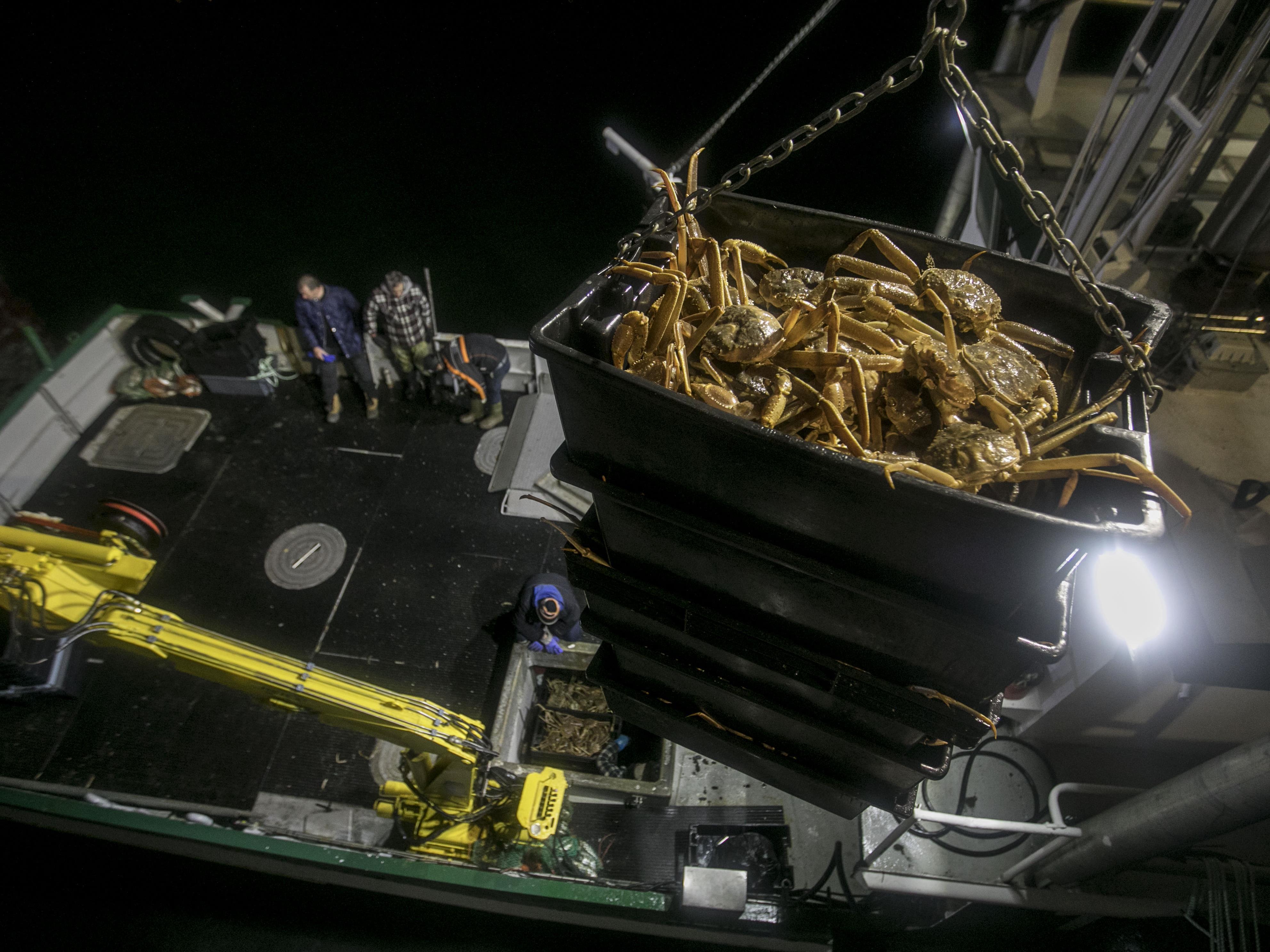 Le crabe se fait décharger du bateau
