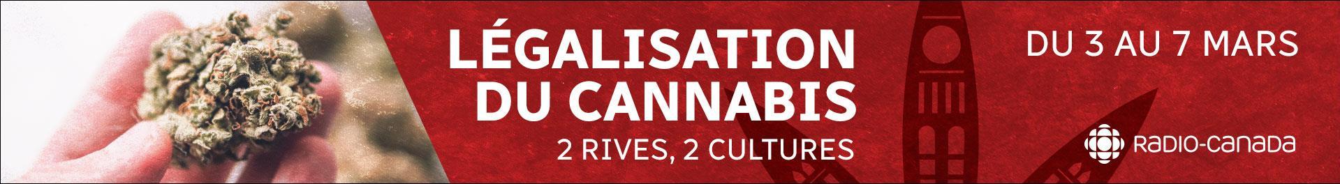 Dossier spécial sur le cannabis