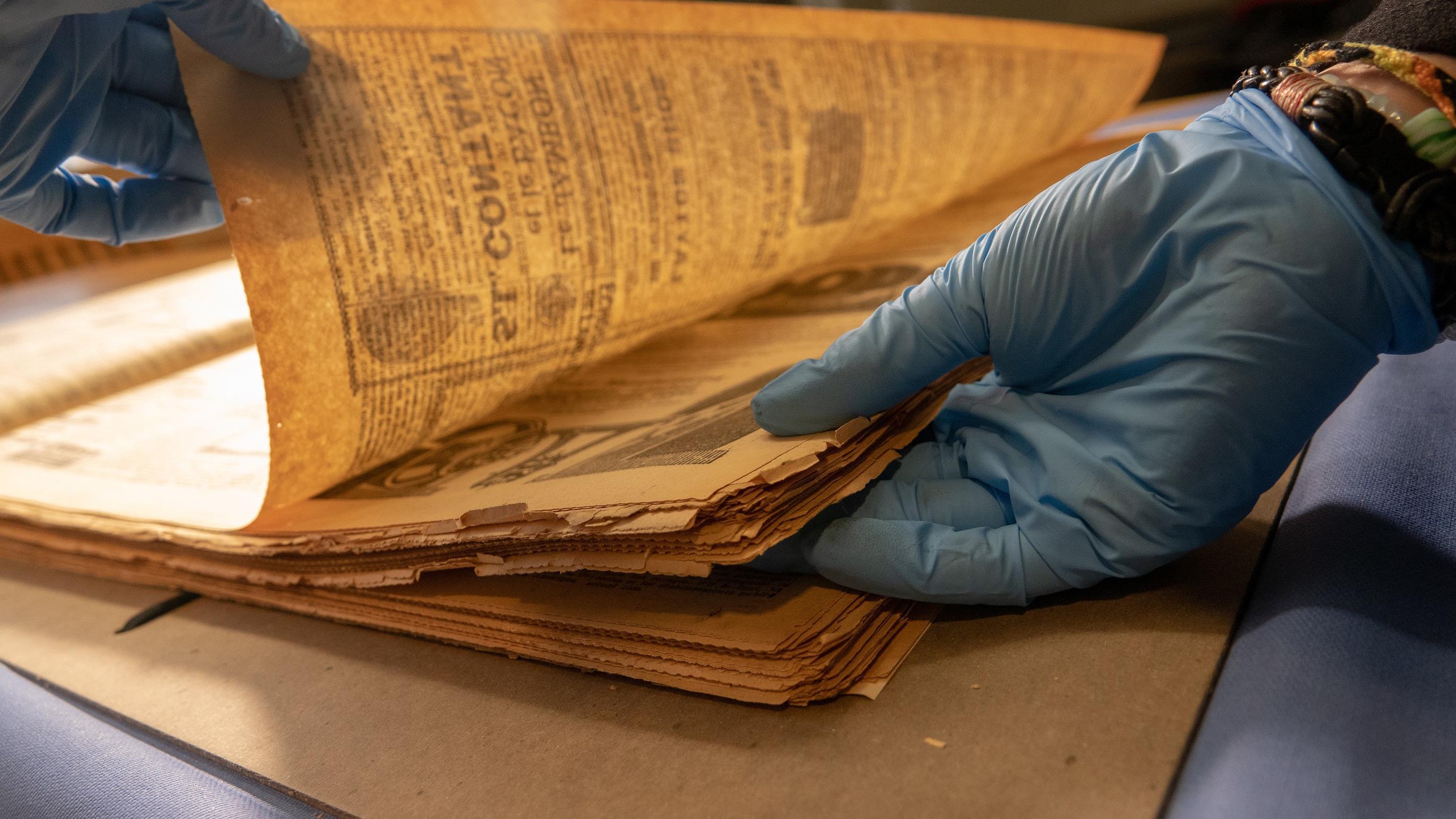 Une archiviste déplie délicatement des journaux de 1919. Photo : Radio-Canada/Martin Thibault