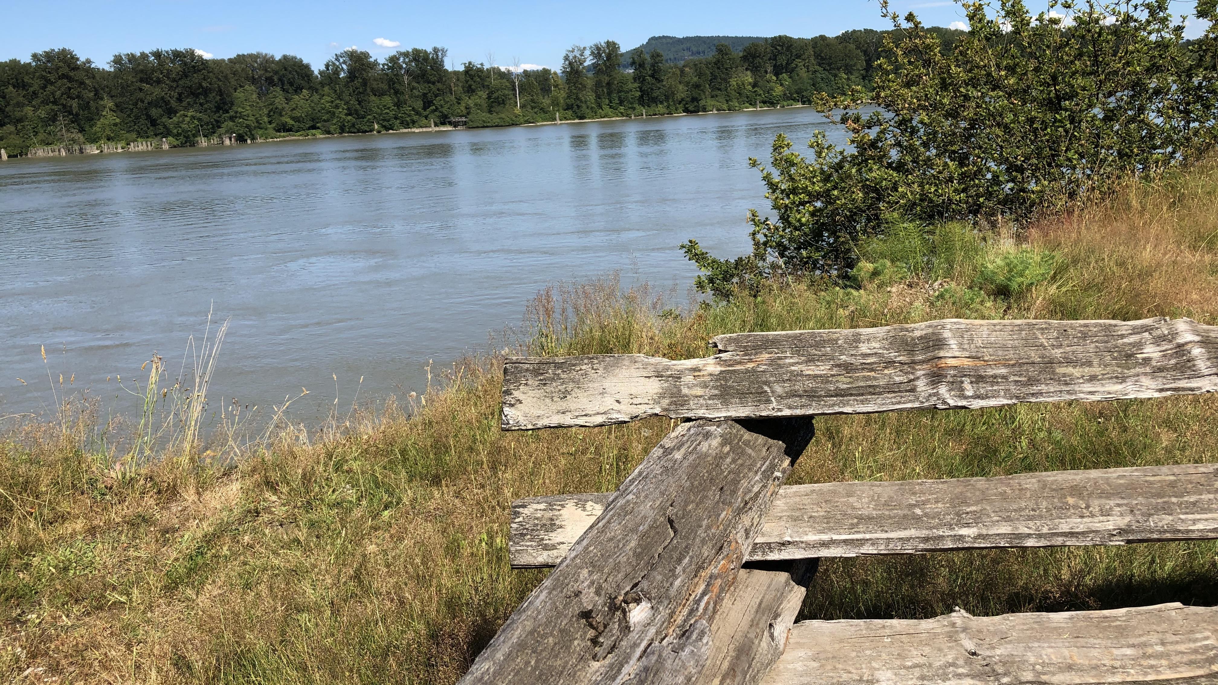 Paysage bucolique près d'une rivière.