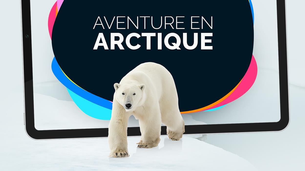 Une image de l'appli Aventure en Arctique : Un ours polaire