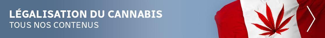Notre dossier sur la légalisation du cannabis