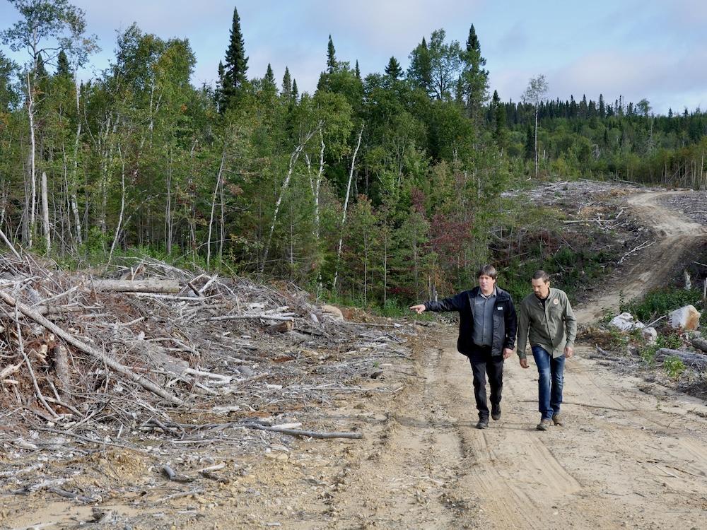 Jonathan Leblond et Bruno Caron marchent dans le chemin forestier. Jonathan Leblond pointe l'amas de bois sur le côté du chemin.
