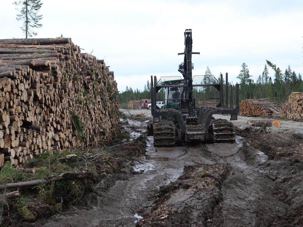 Corde de bois à gauche. Machinerie dont les chenilles s'enfoncent dans la boue laissant des traces derrière elle.