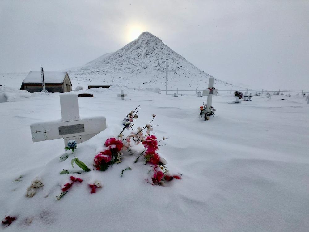 Des fleurs sont recouvertes de neige dans le cimetière de Qikiqtarjuaq.