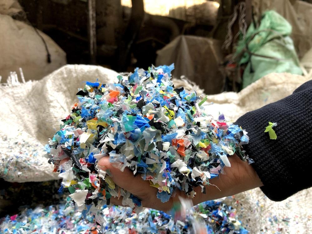 Un homme tient dans sa main du plastique broyé, lavé et séché.