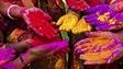 Holi est fêtée partout en Inde, du Nord au Sud