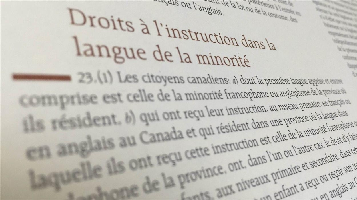 Image de l'article 23 de la Charte canadienne des droits et libertés.