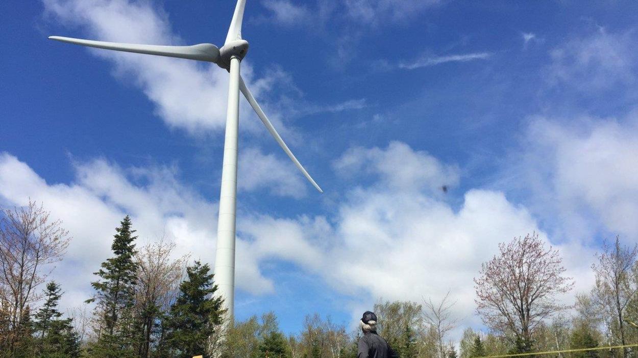 Un homme regarde une éolienne.