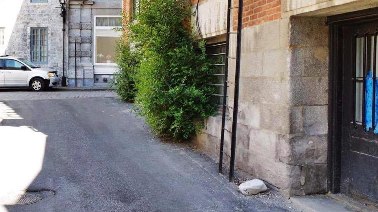 La ruelle avec une échelle et des voitures