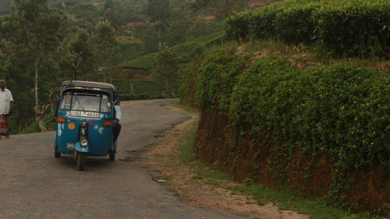 Un touk-touk circulant dans une rue au Sri Lanka.
