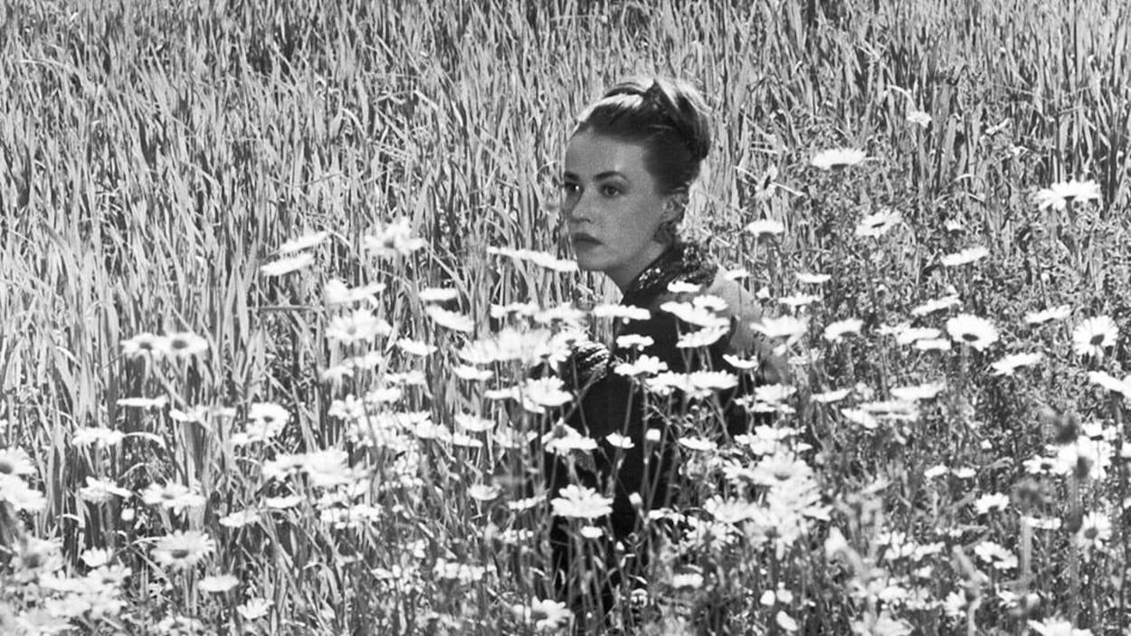 Jeanne Moreau dans le film Mademoiselle de 1963, coiffée d'un chignon, assise dans un champ de marguerites