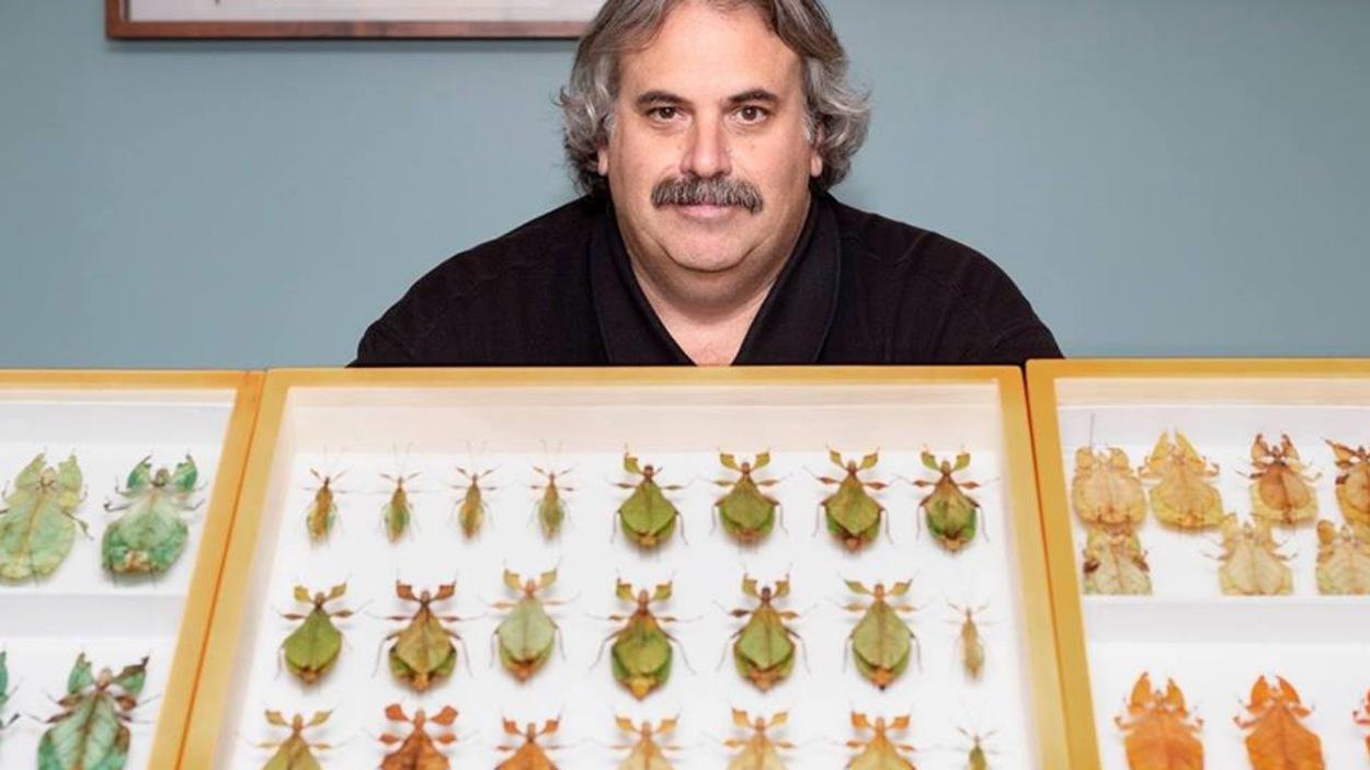 Stéphane Le Tirant pose derrière une vitrine présentant des insectes feuilles.