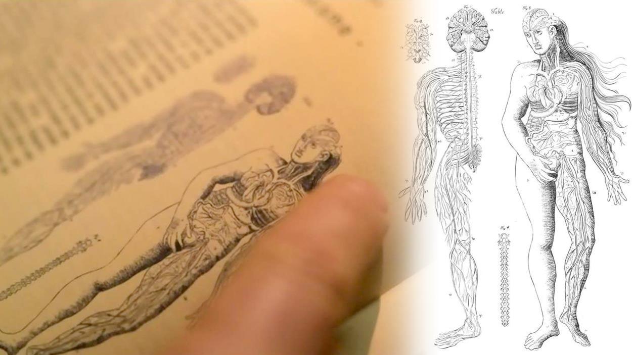 L'illustration du corps féminin dans un livre de médecine tirée d'une scène de la série Les pays d'en haut.