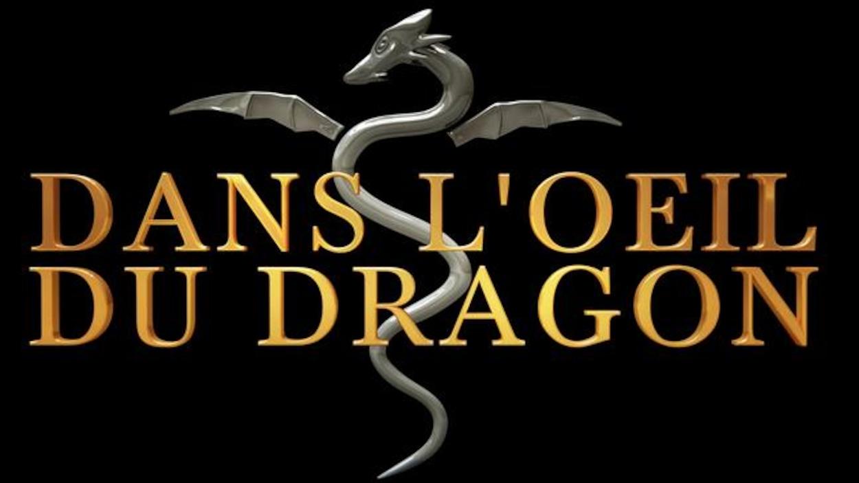 Logo de Dans l'oeil du dragon.
