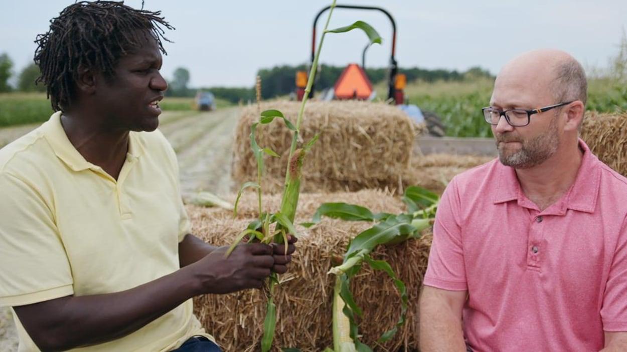 Boucar Diouf rencontre un expert du maïs.