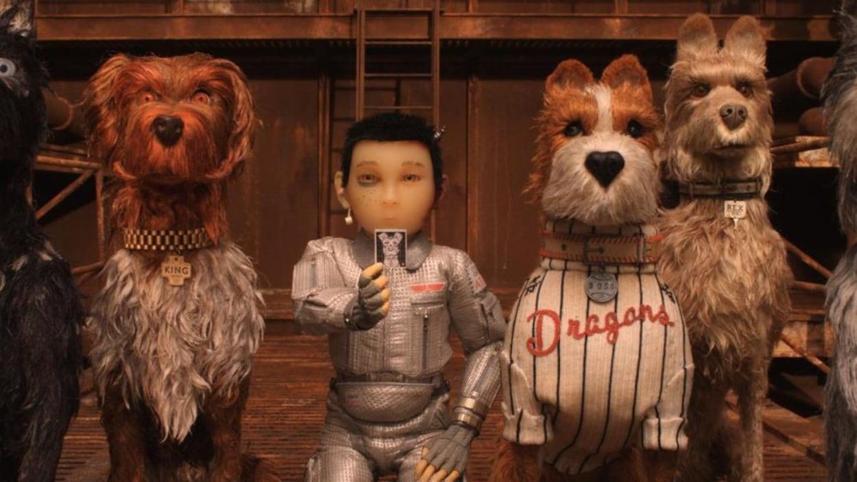 Un jeune garçon tend une photo, au milieu de chiens en marionnettes.