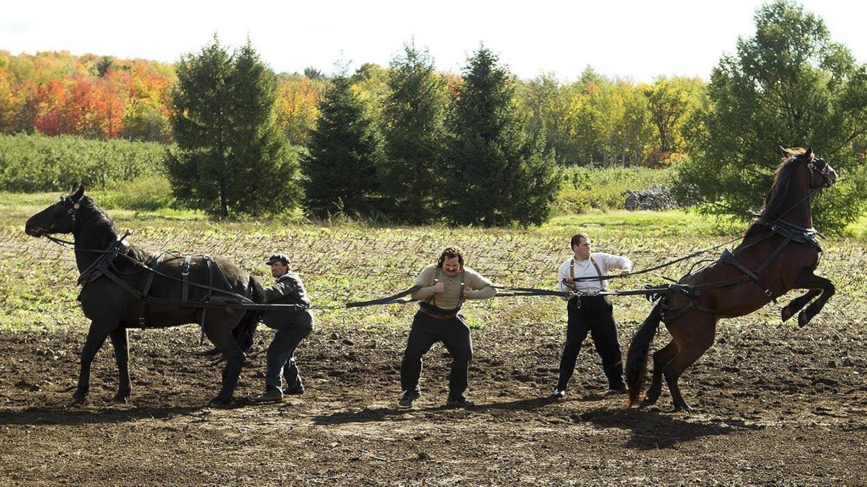 Un homme, dans un champ, retient deux chevaux sur les côtés par des lanières en cuir.