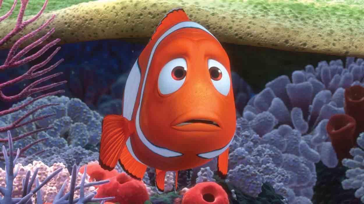 Le papa de Nemo