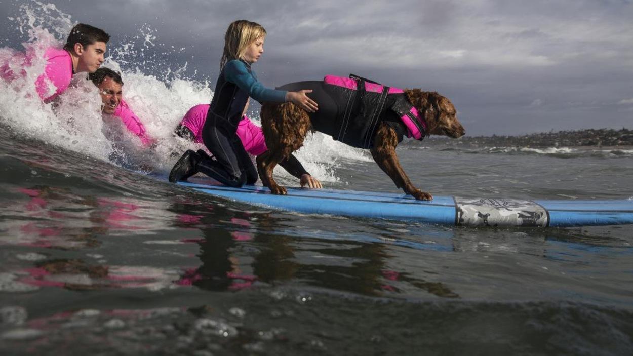 Il est sur la planche avec une petite fille. Ils sont sur des vagues à la mer, avec des surfeurs avec eux.