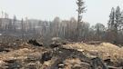 Feux de forêt: la Colombie-Britannique prolonge l'état d'urgence