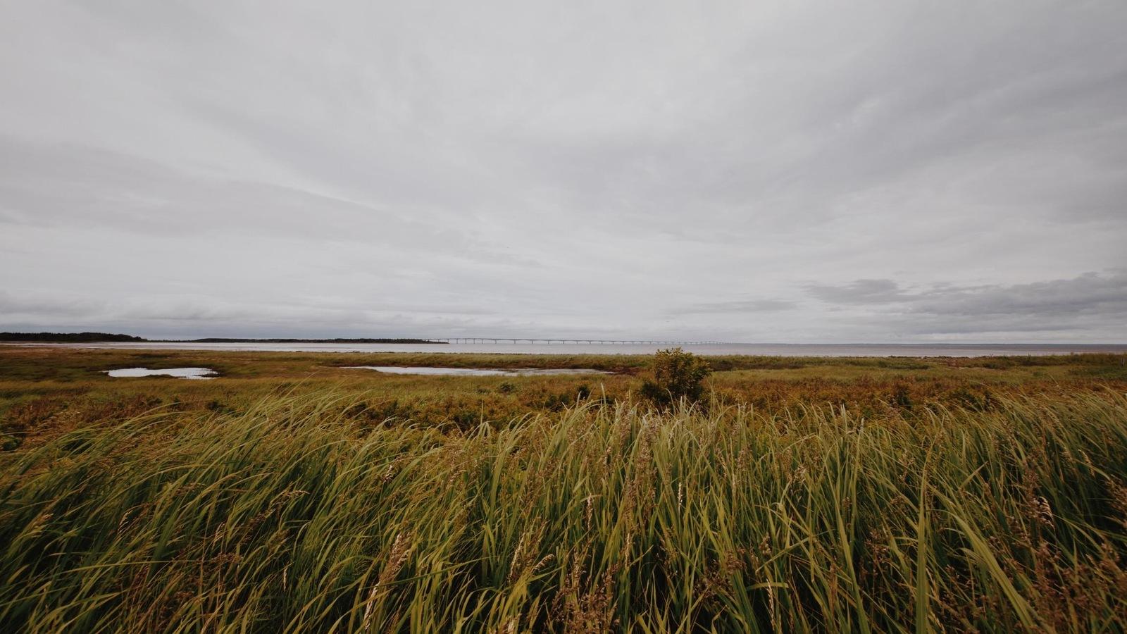 Vue sur le détroit de Northumberland et sur le pont de la Confédération, à l'horizon
