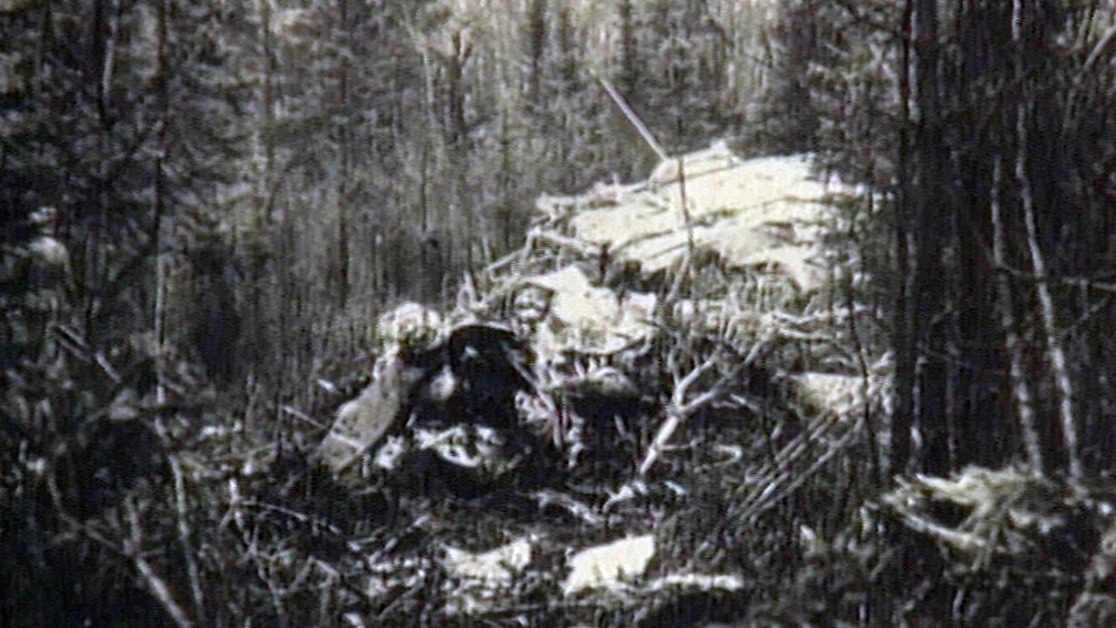 Une photo en noir et blanc des décombres d'un avion dans une zone boisée
