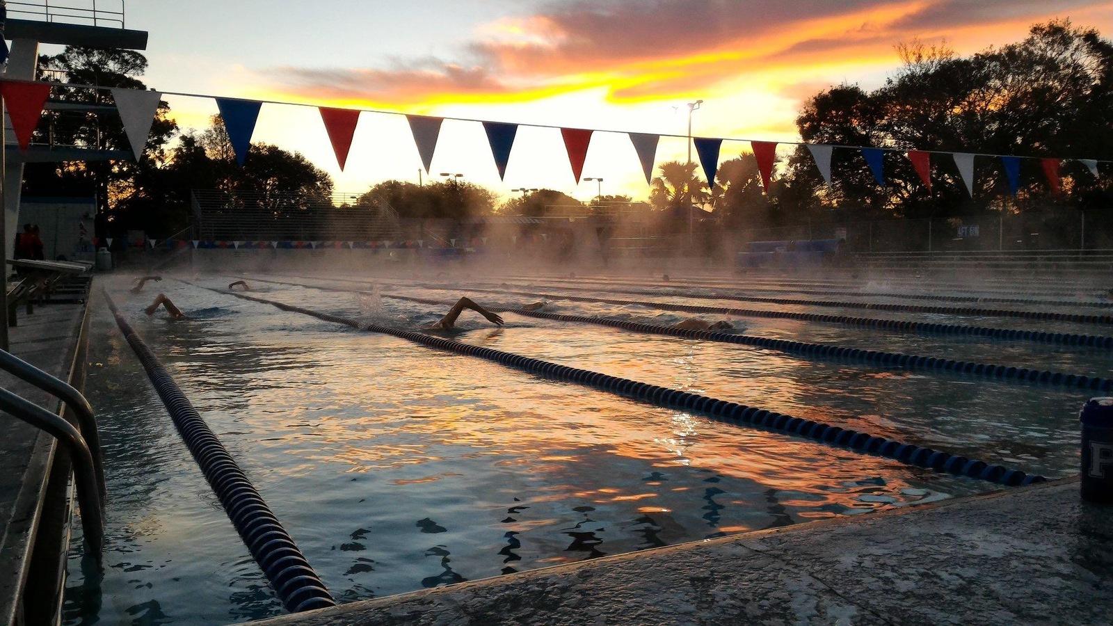 Des nageurs dans une piscine près de Tampa, en Floride