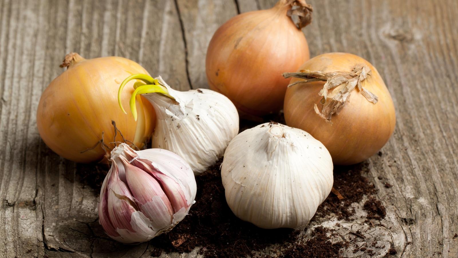 De nombreux aliments, comme l'oignon et l'ail, contiennent des fructanes.