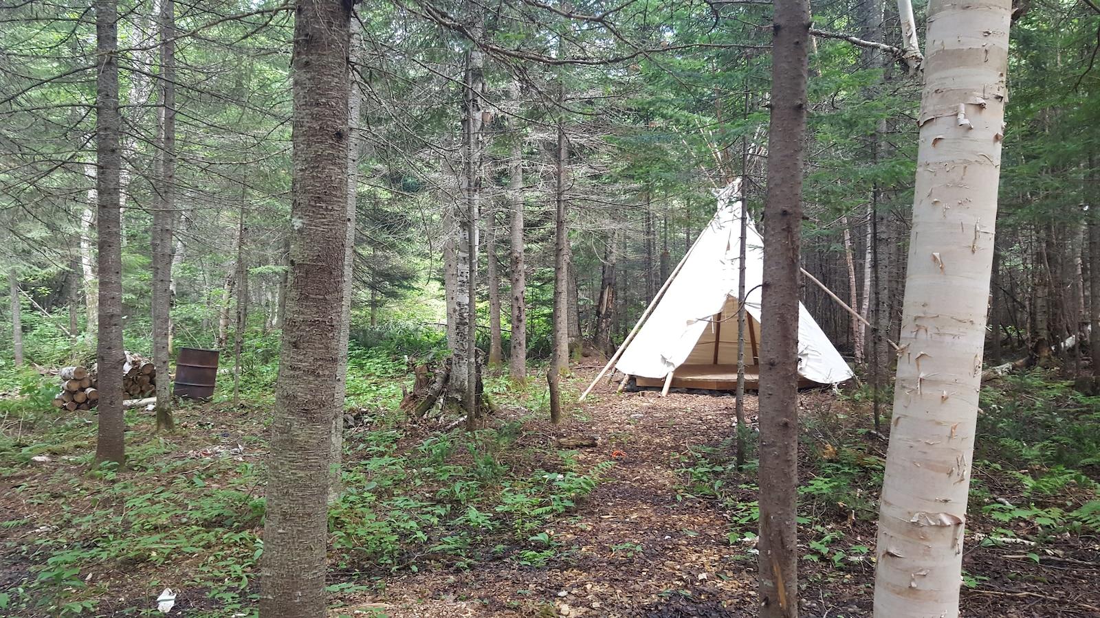Les Autochtones et non-Autochtones peuvent louer des tipis traditionnels pour passer la nuit en forêt. Les Européens sont particulièrement intéressés par ces expériences touristiques authentiques.