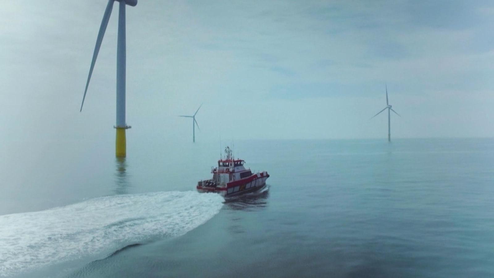 Un bateau passe au milieu d'éolienne en mer.