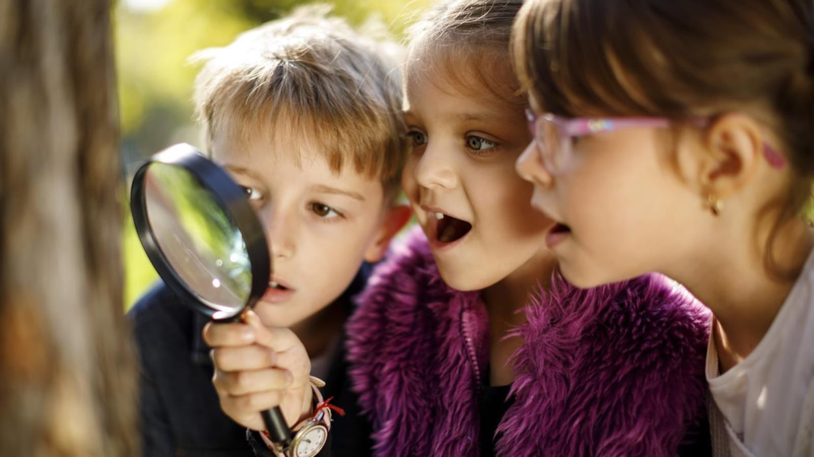 Les deux fillettes et le garçon regardent un arbre avec une loupe