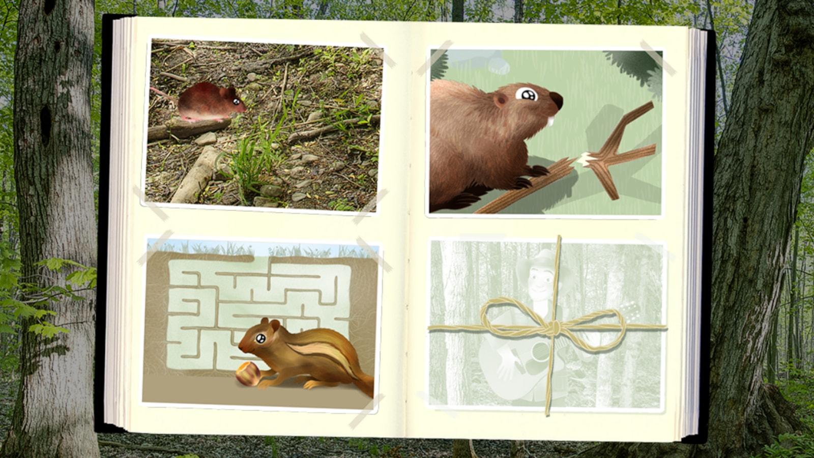On voit Arthur, un castor, une souris et un écureuil