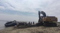 La carcasse de la baleine sur la plage