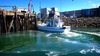Un bateau utilisé pour la pêche de sardines.