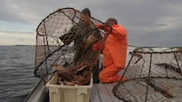 Deux pêcheurs relèvent des filets de pêche.