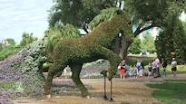 Une oeuvre horticole représentant un cheval