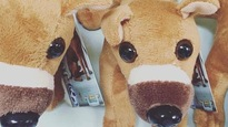 Une peluche à l'image d'un chien maltraité bat des records de vente