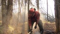 Un pompier manie une hache au moment où un rayon de soleil se dépose sur son dos. Derrière lui, une scène de dévastation permet d'imaginer l'intensité du feu qui a ravagé la forêt.