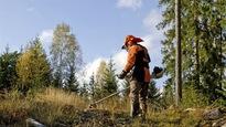 Les grandes entreprises, comme les petites, sont appelées à prendre le virage de l'économie verte.