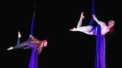 Un cirque ferme pour des raisons de sécurité