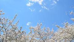 En avril, on écoute des airs printaniers de Frederick Delius